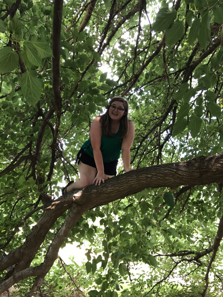 I Went to Lubbock, Texas and All I Did Was Climb a Tree
